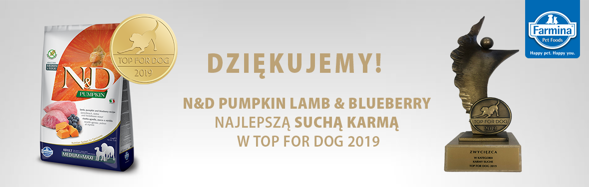 Top For Dog 2019